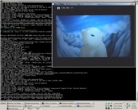 MPlayer on Windows XP